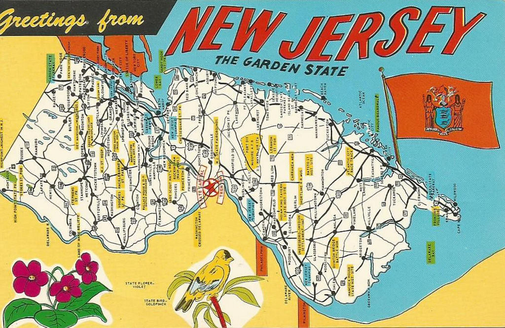 1. Jersey's Own